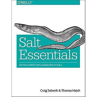 Buchen Sie Salz Essentials von Craig Sebenik - Thomas Hatch - 9781491900635