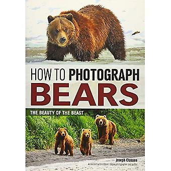How to Photograph Bears: The Beauty of the Beast