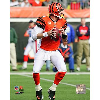 Carson Palmer 2010 Action Photo Print