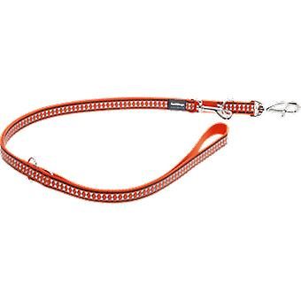 Red Dingo Reflective Belt Orange (Dogs , Walking Accessories , Leads)
