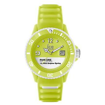 Ice Watch Unisex watch Panton BC.SUS.US13 (Fashion accesories , Watches , Analog)