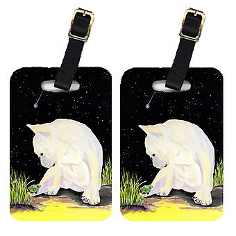Carolines Treasures  SS8992BT Pair of 2 French Bulldog Luggage Tags