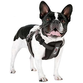 Xt-Dog Arnes Xtdog (Dogs , Collars, Leads and Harnesses , Harnesses)