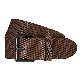 Cinturones de Strellson cinturones hombre cuero cinturón verde oliva/5925