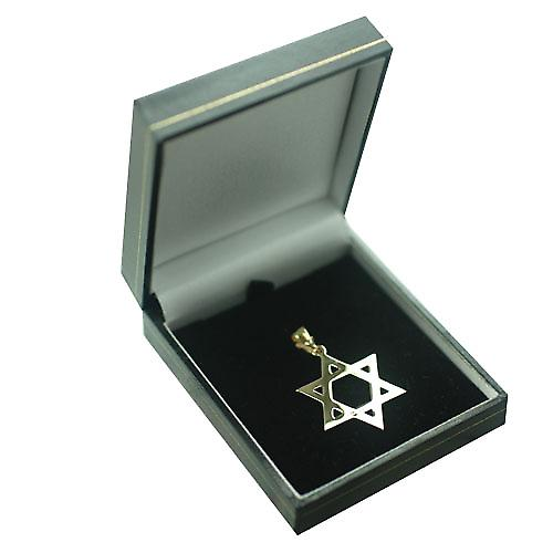 9ct Gold 31x27mm plain Star of David Pendant with bail