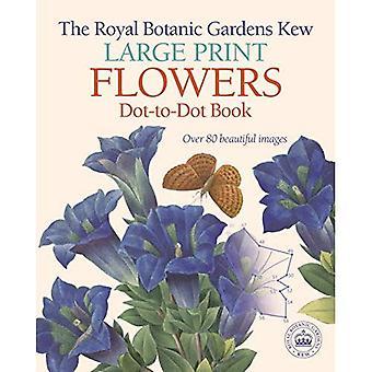 Royal Botanic Gardens Kew stora tryckta blommor prick-till-prick boken: Över 80 vackra bilder