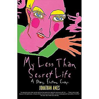 Mijn minder dan geheime leven: een dagboek, fictie, essays
