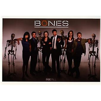 Bones (TV) Movie Poster (17 x 11)