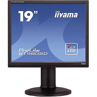 Iiyama B1980SD LED 48,3 cm (19) 1280 x 1024 pix SXGA 5 ms DVI, VGA TN LED
