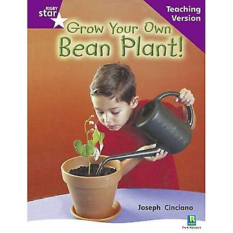 Grow Your Own Bean: Purple Level Non-fiction (Rigby Star Guided)