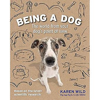 Being a Dog: The World from Your Dog's Point of View