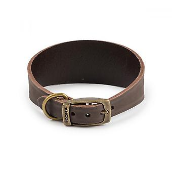 Ancol Timberwolf Leather Whippet Collar