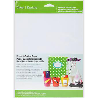Cricut Sticker Paper- 2002530