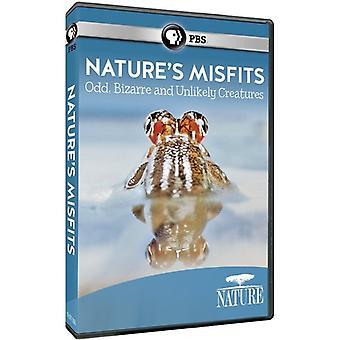 Nature: Animal Misfits [DVD] USA import
