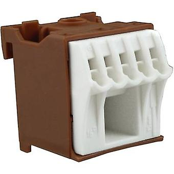 Terminal block Brown, White 6-pin 63 A 230 V Hager KN06P