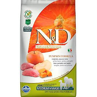 Farmina N&d Grain Free Pumpkin Adult Medium-Maxi Boar (Dogs , Dog Food , Dry Food)