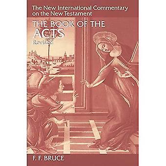 Libro degli atti (nuovo internazionale Commentary on the New Testament)