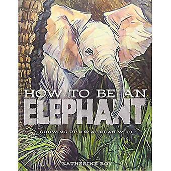 How to be an Elephant (Hardback)