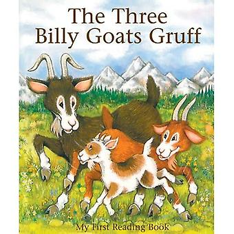 The Three Billy Goats Gruff (My First Reading Book)