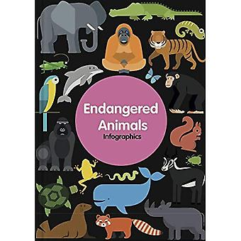 Endangered Animals (Infographics)