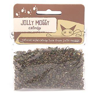 Jolly Moggy Catnip 10g (Pack of 3)