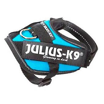 Julius K9 IDC Harness Aquamarine Size 2 (Dogs , Collars, Leads and Harnesses , Harnesses)