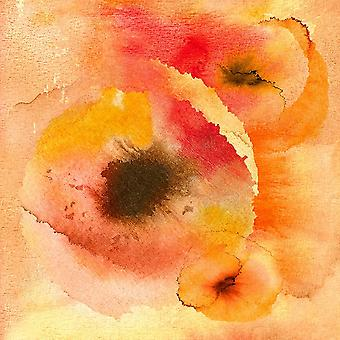 Abstract Watercolor Flowers Poster Print by AV Art