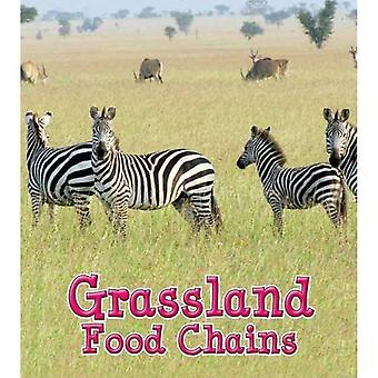 Grassland Food Chains (Food Chains and Webs)