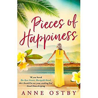 Stukken van geluk: een roman van vriendschap, hoop en chocolade