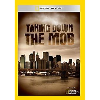 Taking Down the Mob [DVD] USA import