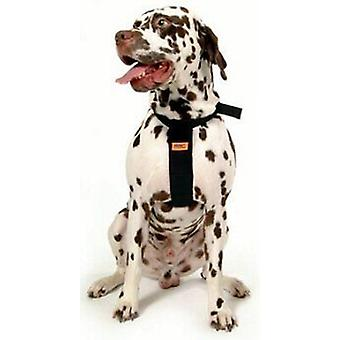 RAC Standard Dog Car Harness, 56 - 89 cm (22-35
