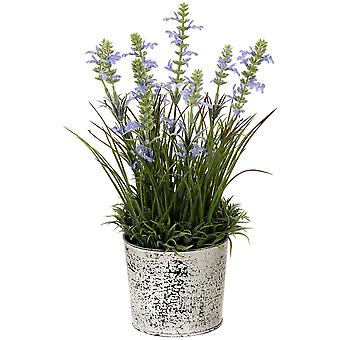 Potted Lavender In Tin Pot 14