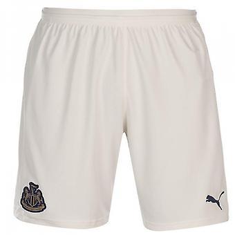 2018-2019 Newcastle entfernt Shorts Fußball (weiß)