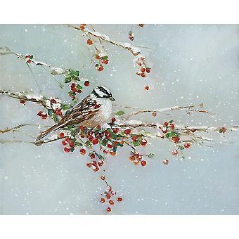 Woodpecker in Winter Poster Print by Sally Swatland