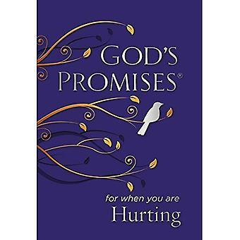 Promessas de Deus para quando você estão machucando