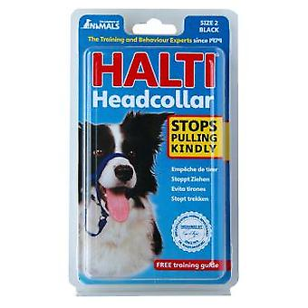 Halti Halti 2 red or black (Dogs , Training Aids , Leashes, Harnesses & Headcollars)