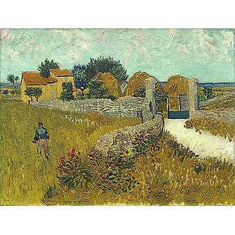 Vincent Van Gogh - Farmhouse in Provence, 1888 Poster Print Giclee