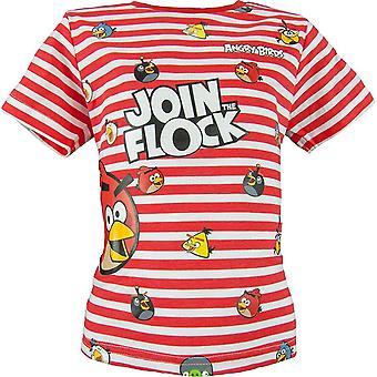 Boys Angry Birds Short Sleeve T-shirt