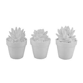 Bright White 3 Piece Artificial Mini Potted Succulent Plant Set