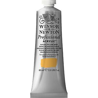 Winsor & Newton professionella akryl 60ml - 425 Naples gul djup (S2)