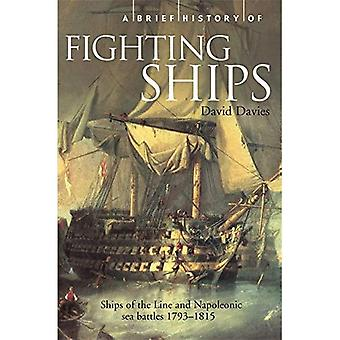 Une brève histoire de la lutte contre les navires (bref historique)