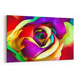 Large A1 A2 A3 Panel Panoramic Abstract Coloured Flower Canvas Wall Art for your Living Room Prints - Pictures