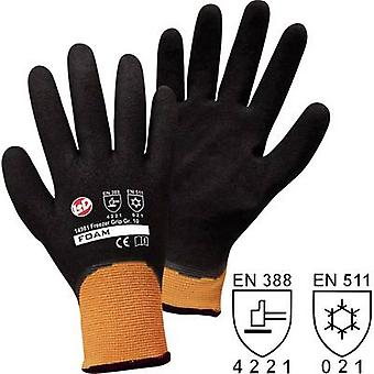 worky 14981 Size (gloves): 8, M