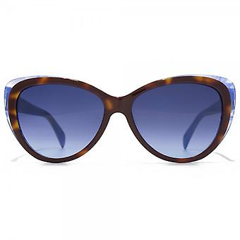 Just Cavalli Two Tone Cateye Sunglasses In Havana Blue
