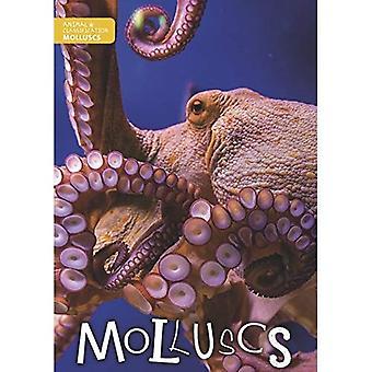 Weekdieren (dierlijke Classification)