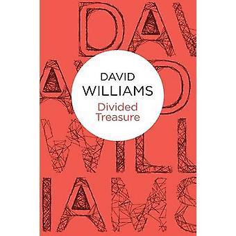 Divided Treasure by Williams & David