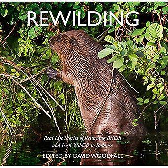 Rewilding: Real Life historier om återvändande brittiska och irländska Wildlife till balans