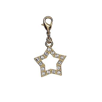 Pilgrim Charm pendant Star in gold (560040)