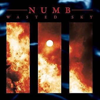 Numb - bortkastade Sky [Vinyl] USA importera