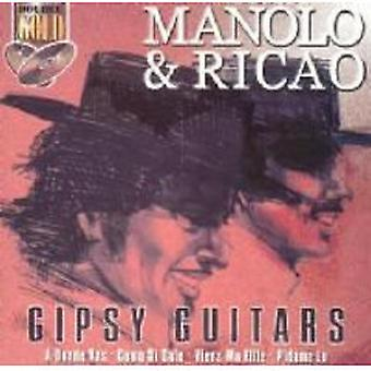 Manolo & Ricao: Gipsy guitarer (2 CD)